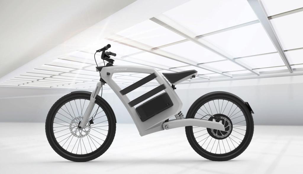 Elektro-Bike-Feddzs1