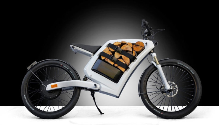 Elektro-Bike-Feddzs2