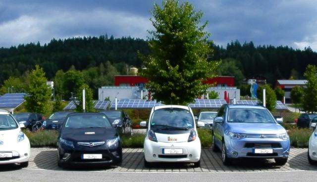 E-Wald-Elektroauto