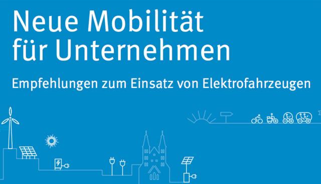 Elektroauto-Unternehmen-Flottenmanagement